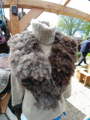 Oerkraag van Texelse wol